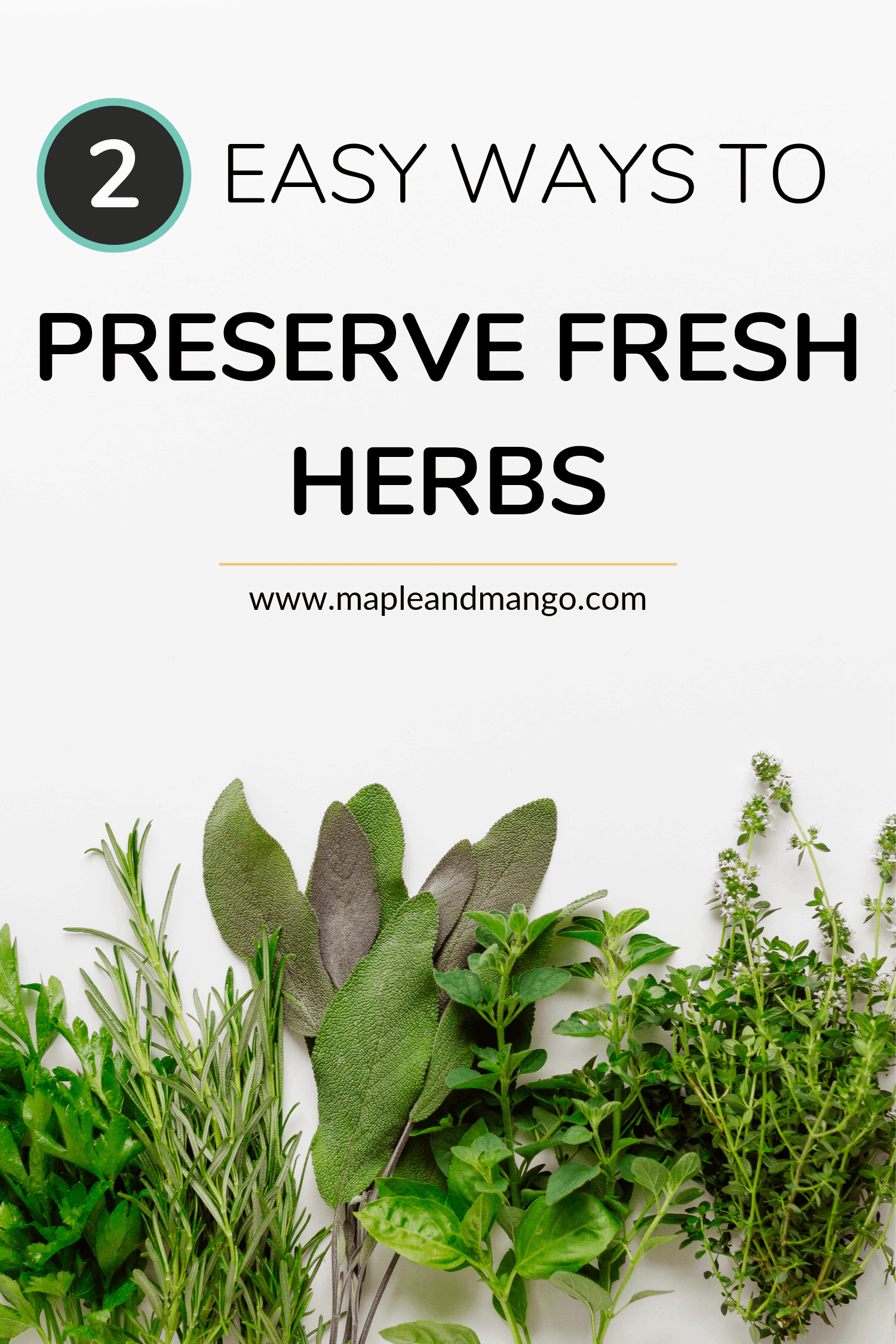Pinterest Image for 2 Easy Ways to Preserve Fresh Herbs