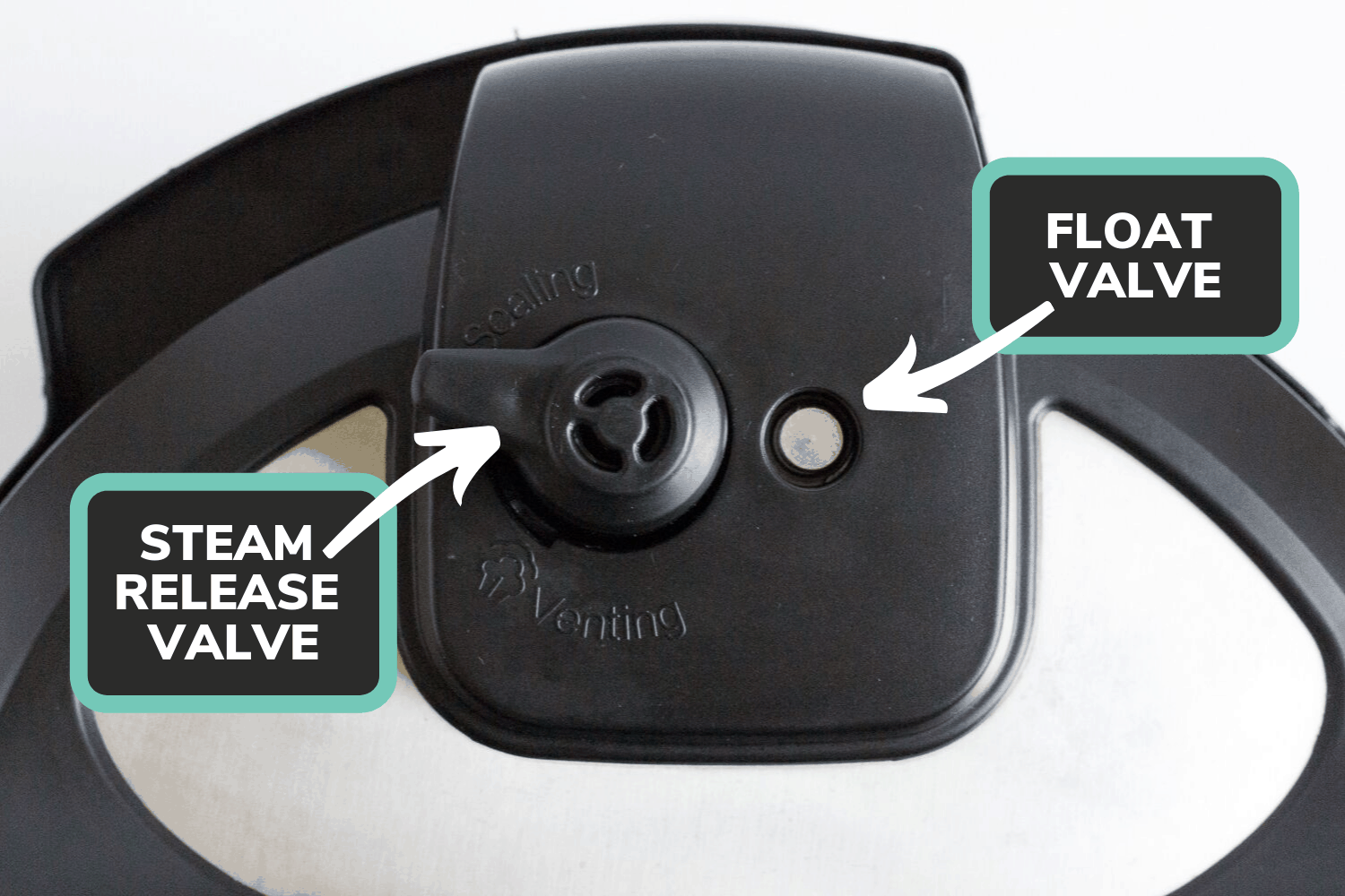 Instant Pot lid with labels showing where the steam release valve and float valve are