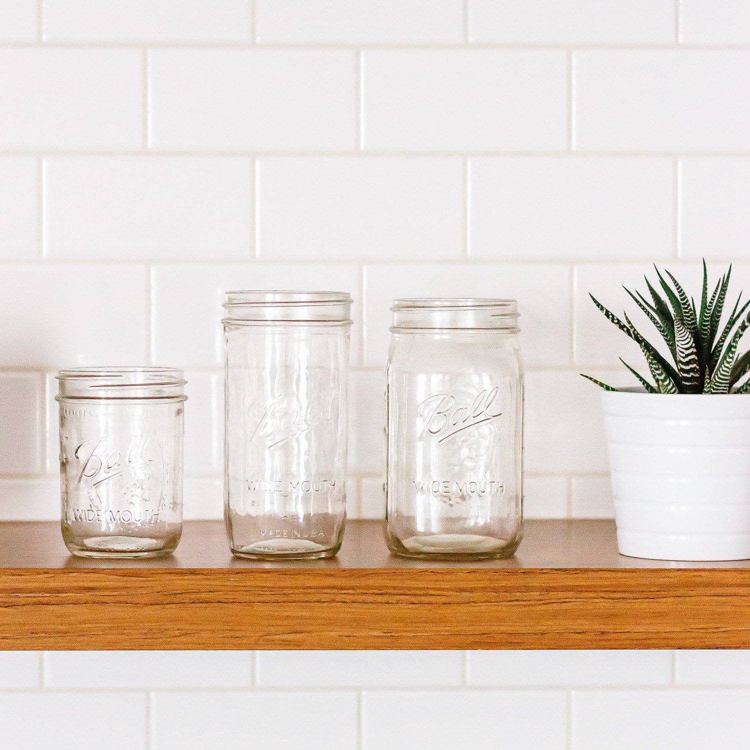 Three glass mason jars sitting on a kitchen shelf next to a plant.